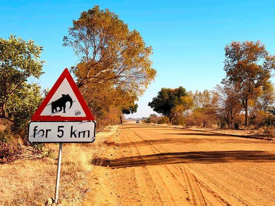 In Richtung Sambesi-Region - Alina Kirsten | erlebnisreisen-afrika.de