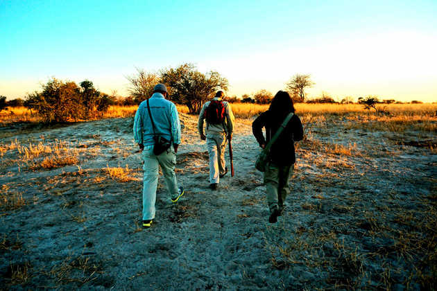 Game Walk in Botswana - Alina Kirsten | erlebnisreisen-afrika.de