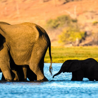 Rundreise Botswana, Namibia & Simbabwe 2021 / 2022   Erlebnisreisen-Afrika.de