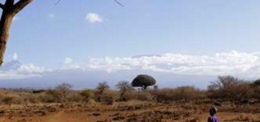 Kenia deutschsprachig gefuehrte Studienreisen 2020  | Erlebnisreisen-Afrika.de