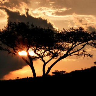 Sonnenuntergang - Patrick Kleinkorres | erlebnisreisen-afrika.de
